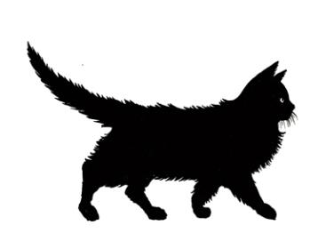silueta de gato